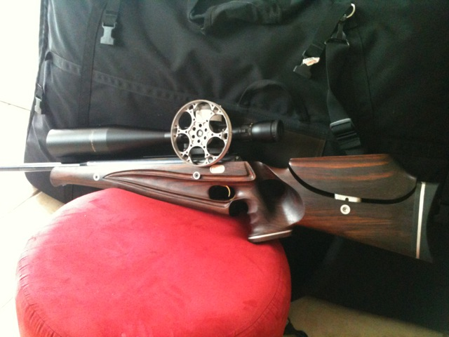 Air Arms Pro-Sport. GinB