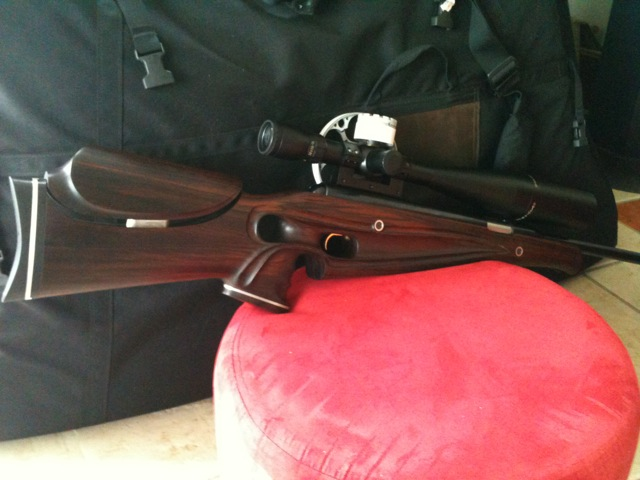 Air Arms Pro-Sport GinB