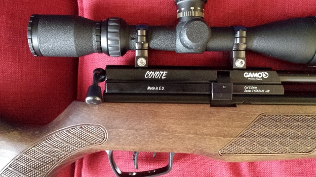 Gamo Coyote 5 5mm Review ~ Air Rifle SA Forums