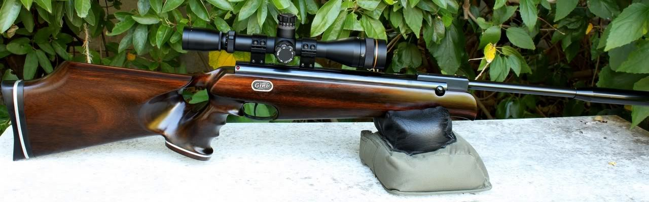 R7 anyone? Show me your R7! | Airgun Talk | Airgun Warriors Forum